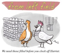 a from left filed cartoon about chicken and eggs by macd