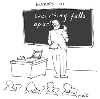 entropy-101-macd-sm