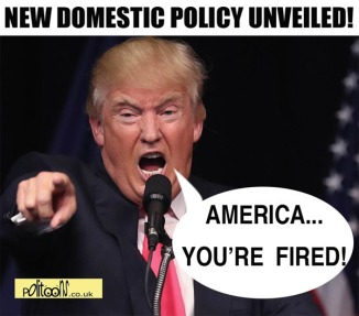 domestic-policy-politoons