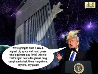 donaldo's-space-wall-macd